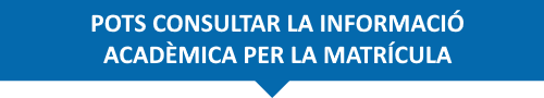 consulta-info-academica.png