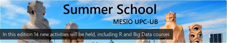 benvingut_summerschool_generic_2018.jpg