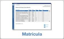 Matrícula FME 2020-2021 (Q1)